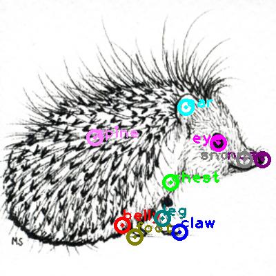 hedgehog_0014.png