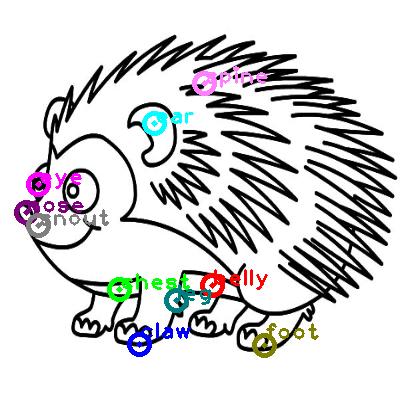 hedgehog_0015.png