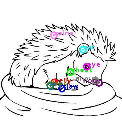 hedgehog_0017.png