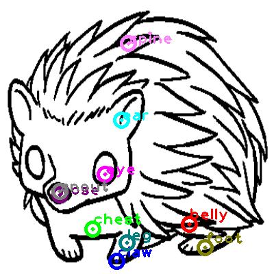 hedgehog_0018.png