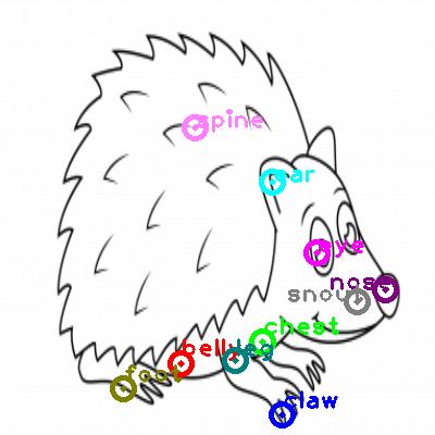 hedgehog_0019.png