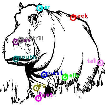 hippo_0005.png