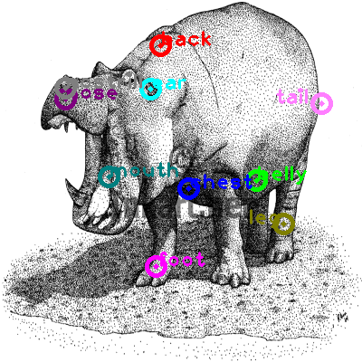 hippo_0016.png