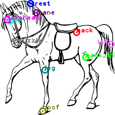 horse_0002.png