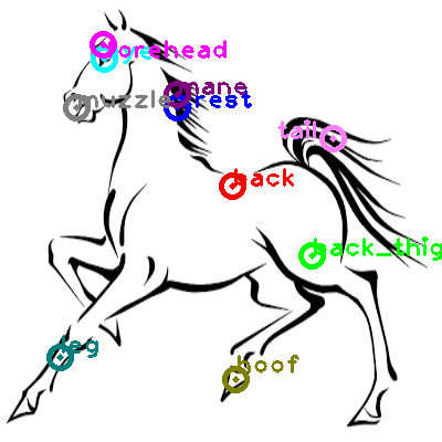 horse_0006.png