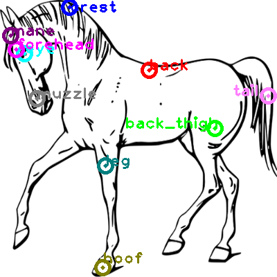 horse_0017.png