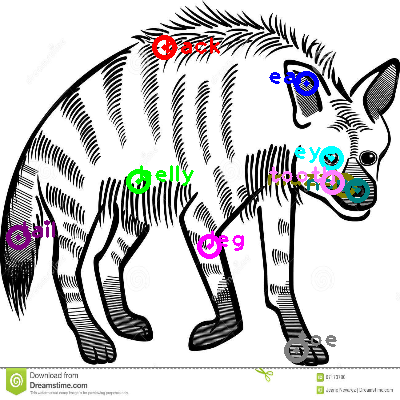 hyena_0005.png
