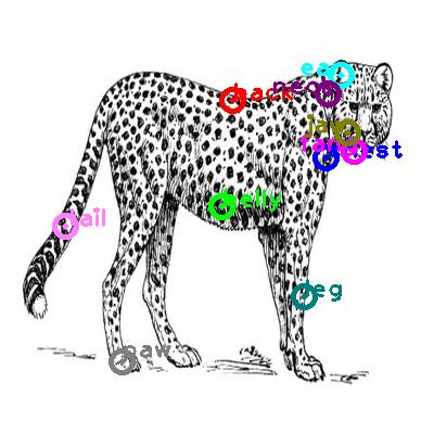 jaguar_0001.png