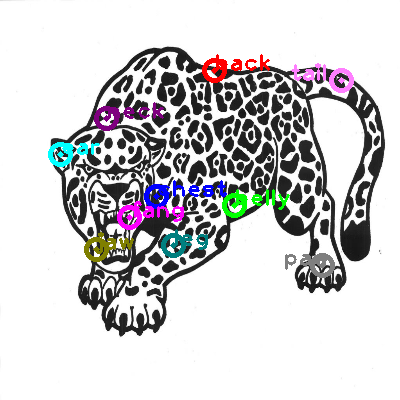 jaguar_0010.png