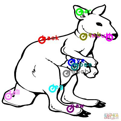 kangaroo_0012.png