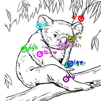 koala_0005.png