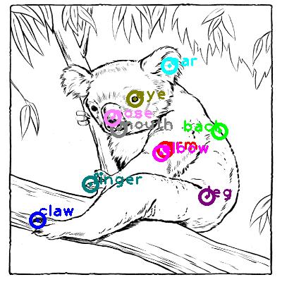 koala_0014.png