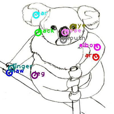 koala_0017.png
