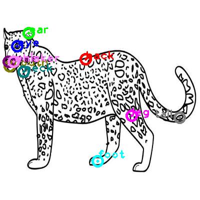leopard_0014.png