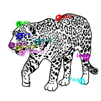 leopard_0017.png