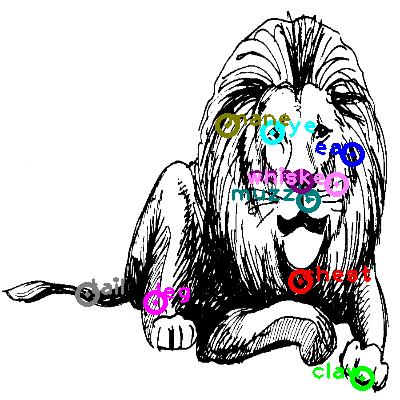 lion_0019.png