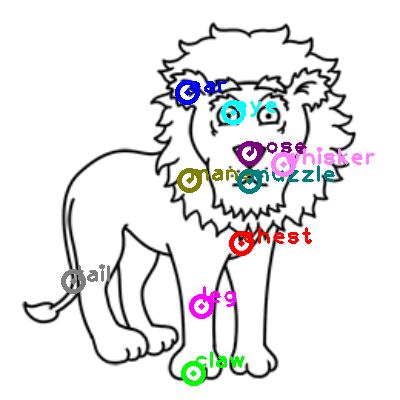 lion_0020.png
