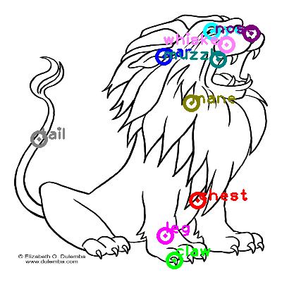 lion_0028.png