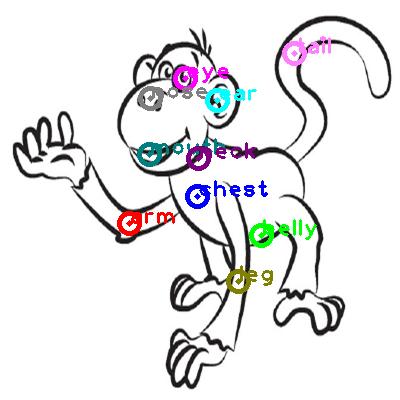 monkey_0001.png