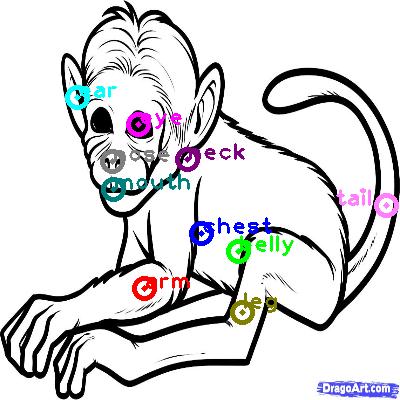 monkey_0006.png