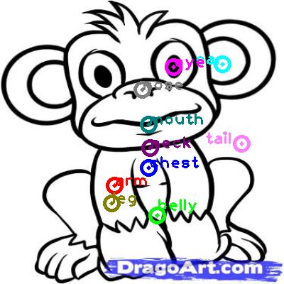 monkey_0009.png