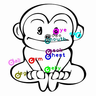 monkey_0012.png