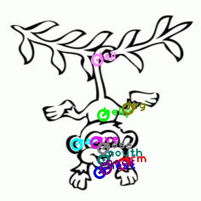 monkey_0027.png