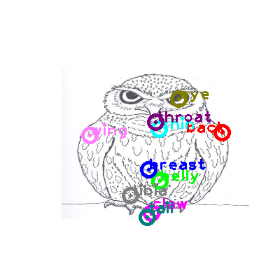owl_0008.png