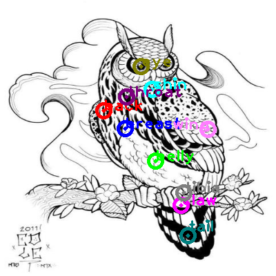 owl_0011.png