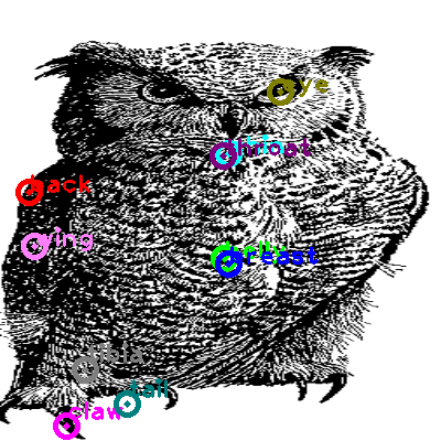 owl_0018.png
