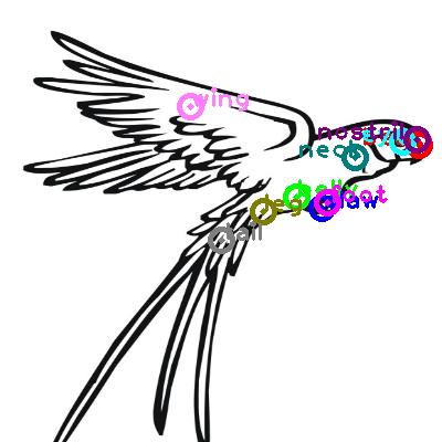 parrot_0029.png