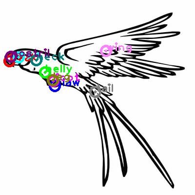 parrot_0047.png