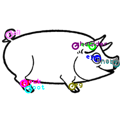 pig_0018.png