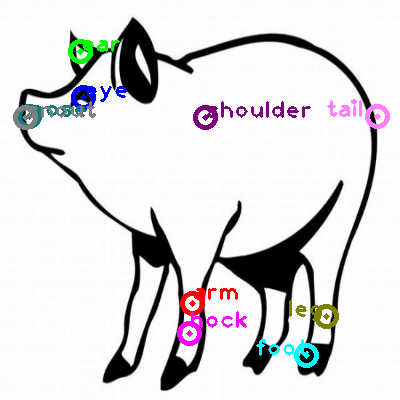 pig_0023.png