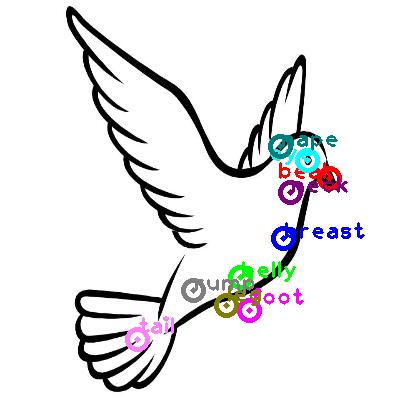 pigeon_0017.png