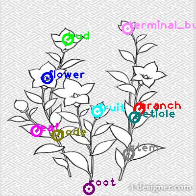 plants_0019.png