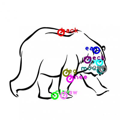 polar-bear_0012.png