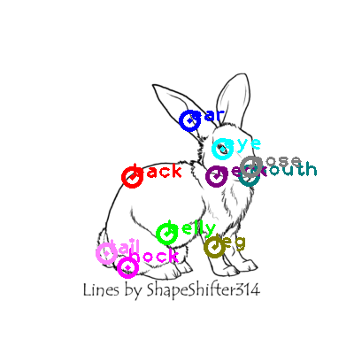 rabbit_0011.png