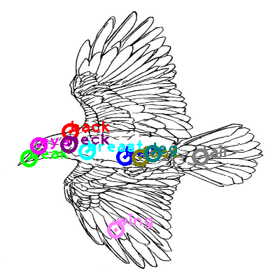 raven_0002.png