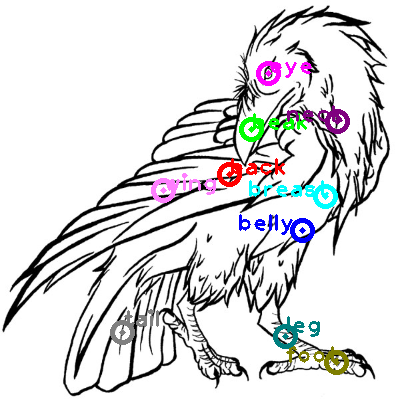 raven_0010.png