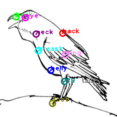 raven_0011.png