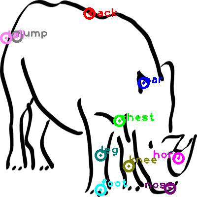 rhinoceros_0008.png