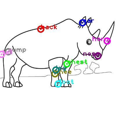 rhinoceros_0011.png