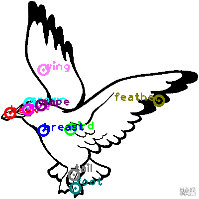 seagull_0004.png
