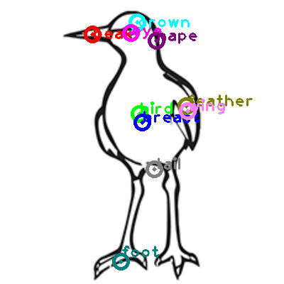 seagull_0019.png