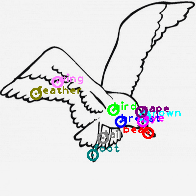 seagull_0028.png