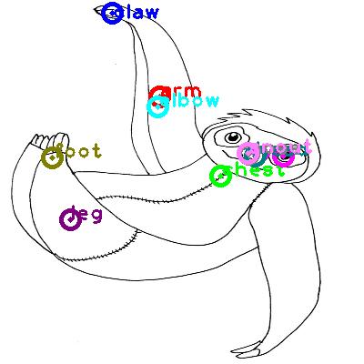 sloth_0008.png