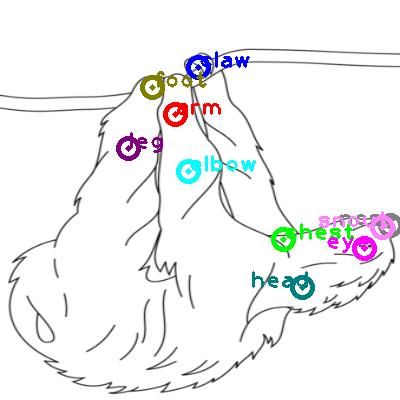 sloth_0023.png