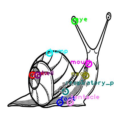 snail_0001.png