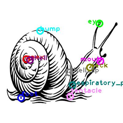 snail_0002.png
